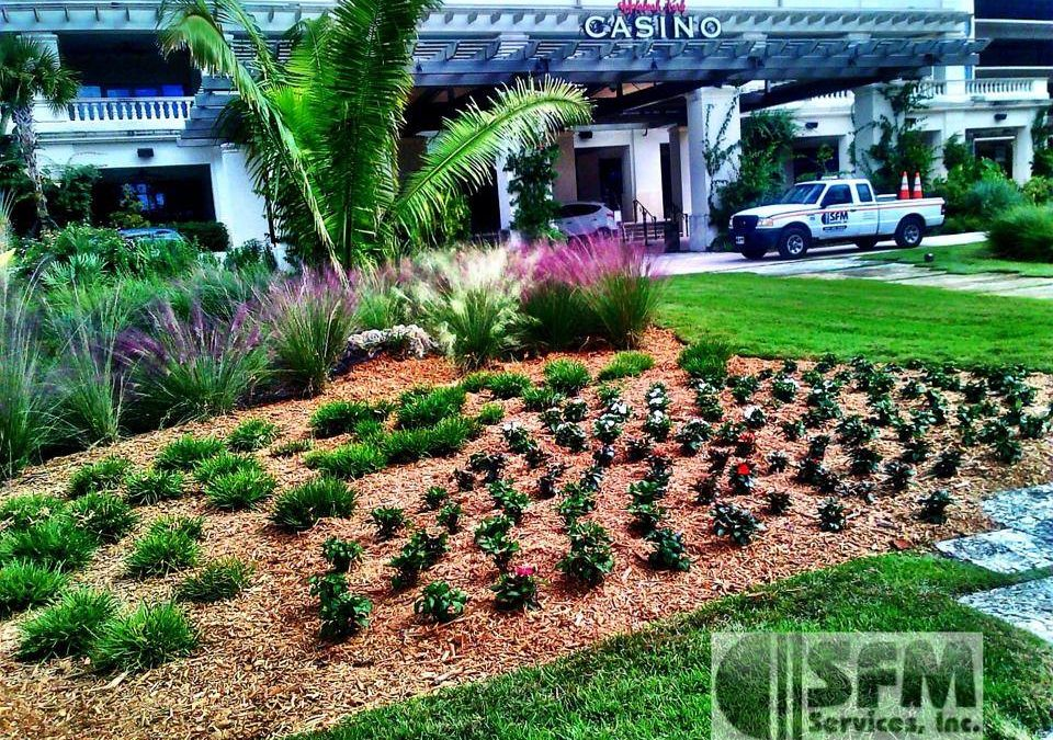 Sustainable Landscaping for Commerical Properties