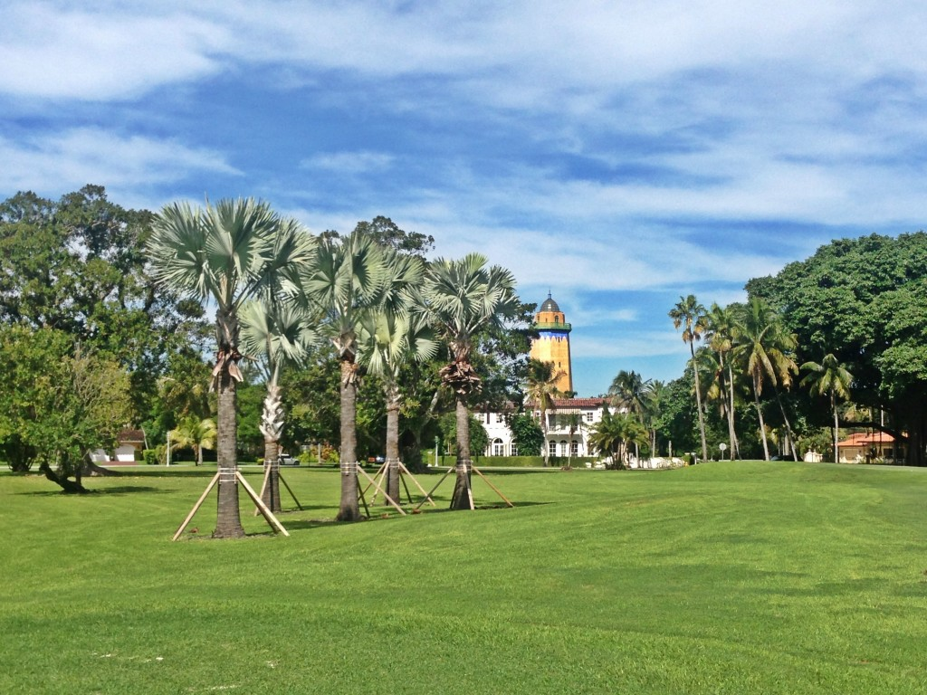 Bizmarck Palms @ Granada 2014