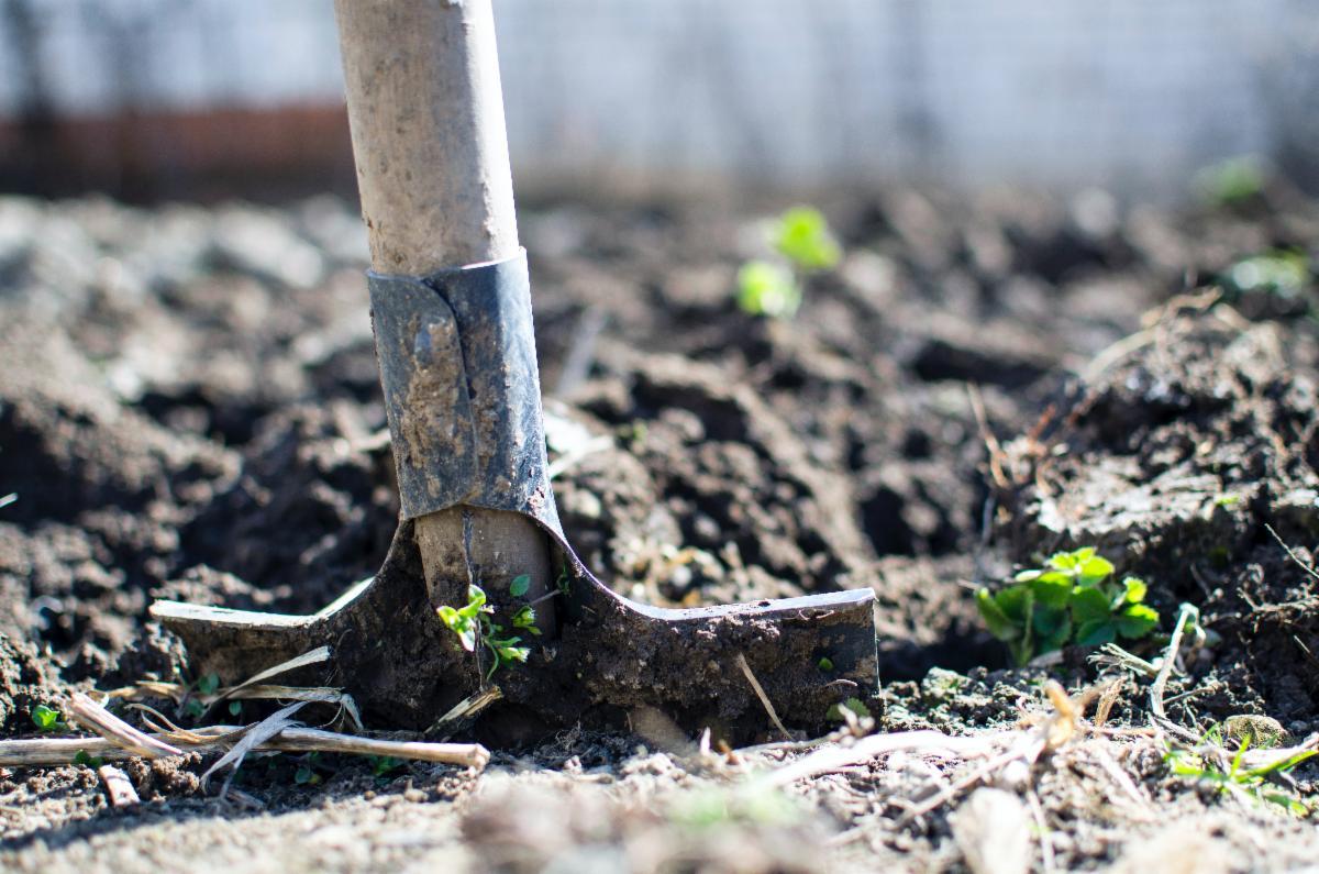 Close up of a garden shovel in dirt