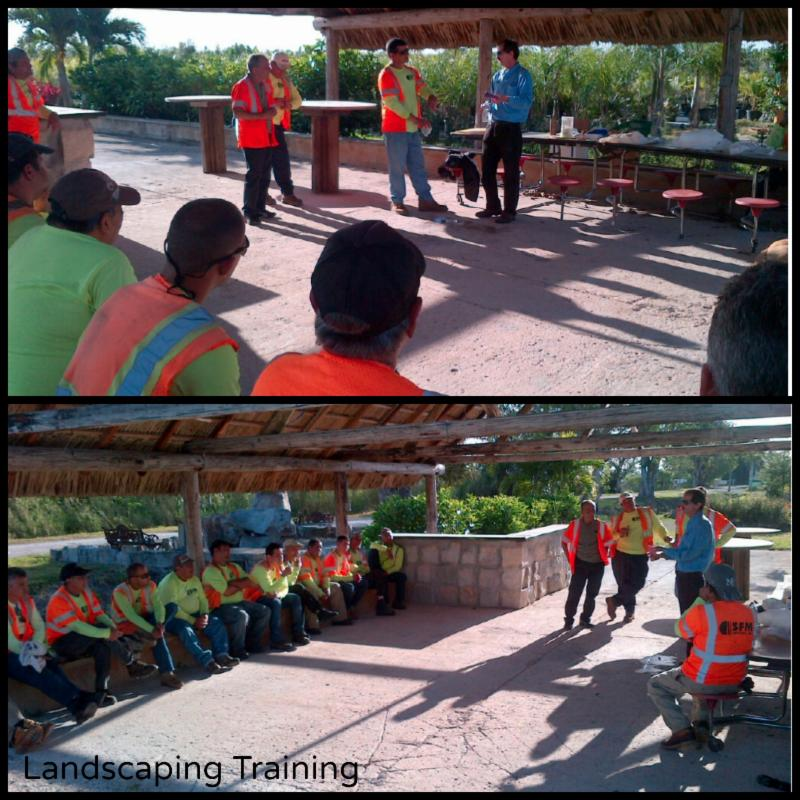 Landscaping Training and Arborist Accolades