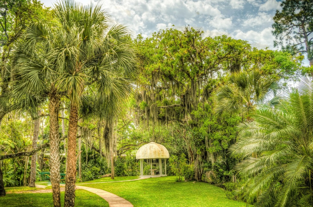 Images shows a green space with palmetto palm trees and moss hanging from some of the trees branches with a gazebo in the middle.