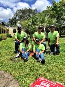 SFM tree planting